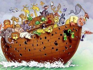 Probleme auf der Arche Noah