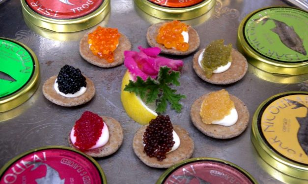 Farben und Größen von Kaviar