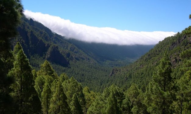 Wie gross ist die Insel La Palma