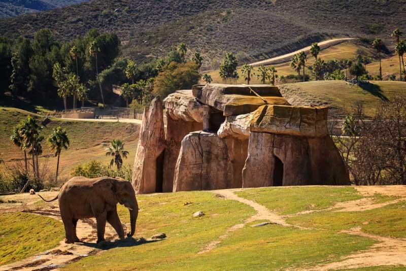 Der größte Zoo der Welt