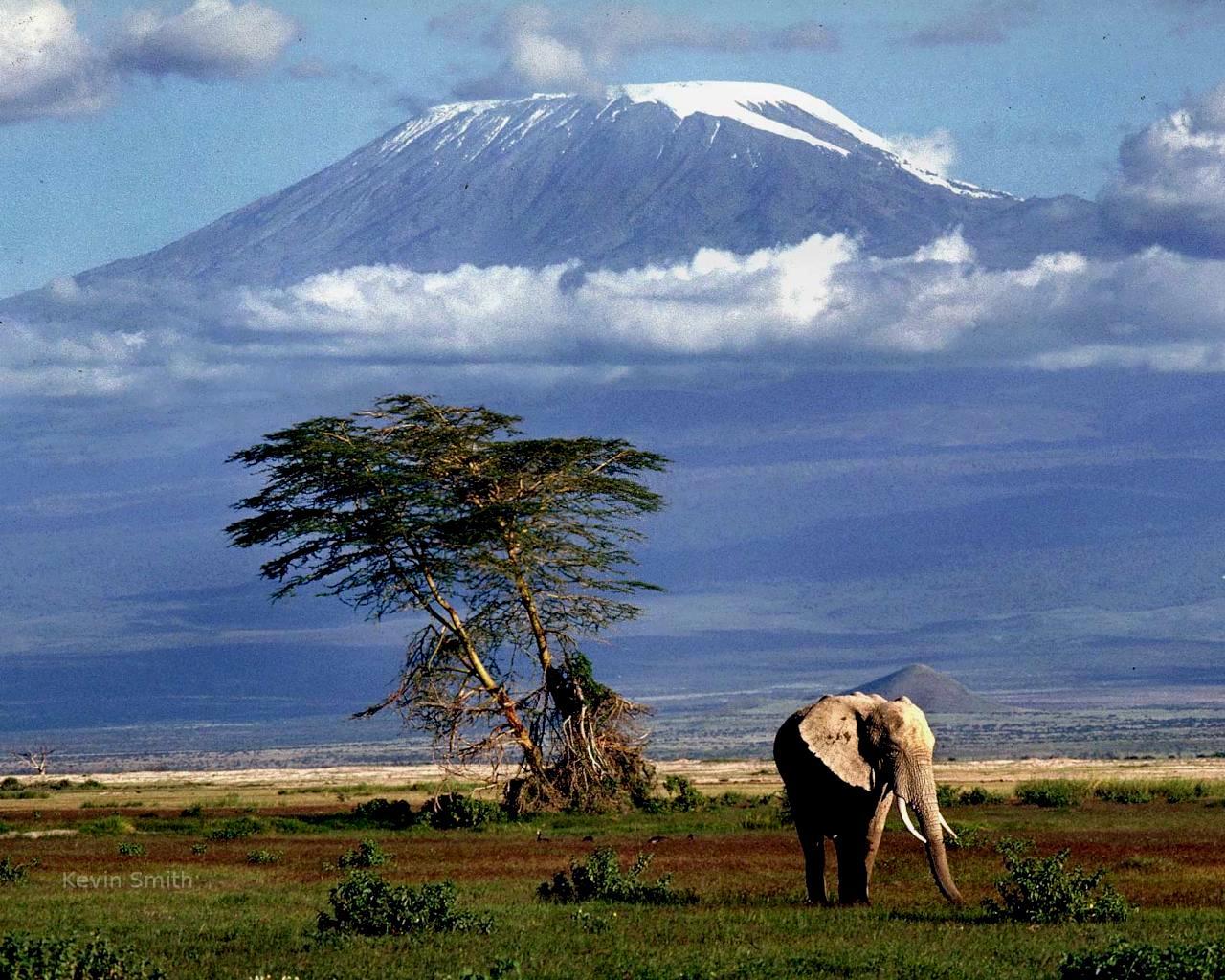 der h chste berg afrikas der kilimandscharo wie gross wie schwer wie weit wie hoch. Black Bedroom Furniture Sets. Home Design Ideas