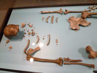 Skelett Reste eines Neandertaler