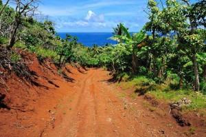 Pfade auf Pitcairn