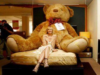 Ein Teddybär zum kuscheln